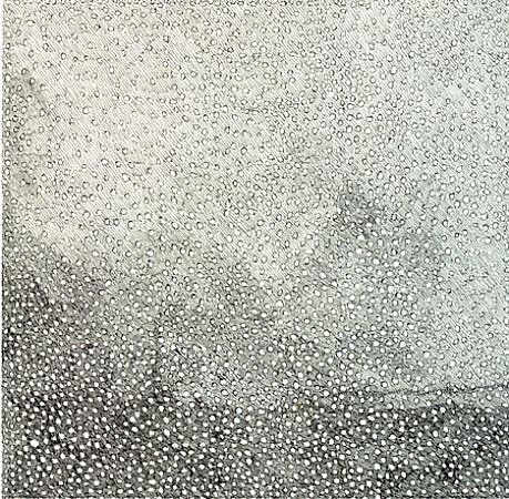 Jacob El Hanani, Circle and Line 2011, Ink on paper