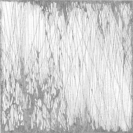 Jacob El Hanani, Leaves (from the Linear Landscape Series) 2011, Ink on paper