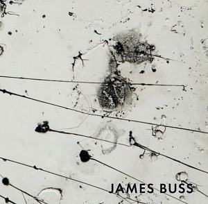 James Buss News: CATALOGUE RELEASE: James Buss at Holly Johnson Gallery, December 20, 2016