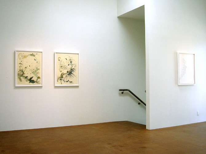 Drawing Conclusions - Installation View